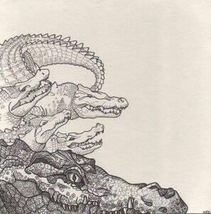 crocodiles_dessin_mmk_myriam_sitbon