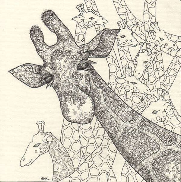 girafes_dessin_mmk_myriam_sitbon