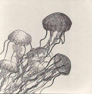 Carte méduses