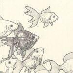 poissons_dessin_mmk_myriam_sitbon